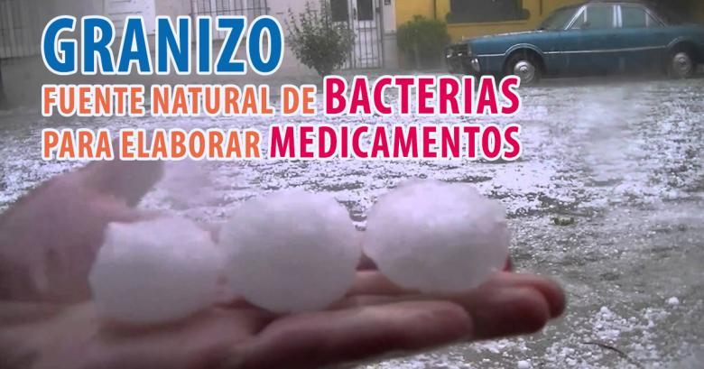 El granizo contiene bacterias antitumorales