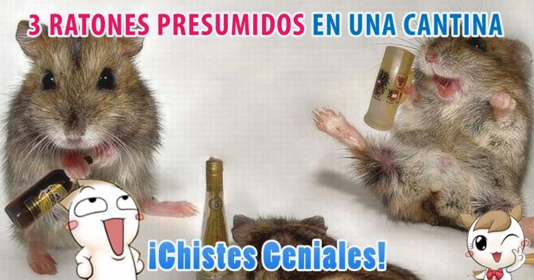 3 ratones presumidos en una cantina