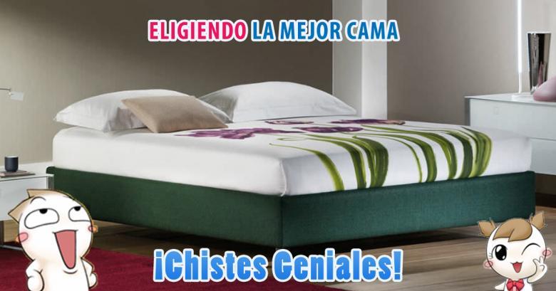 Eligiendo la mejor cama