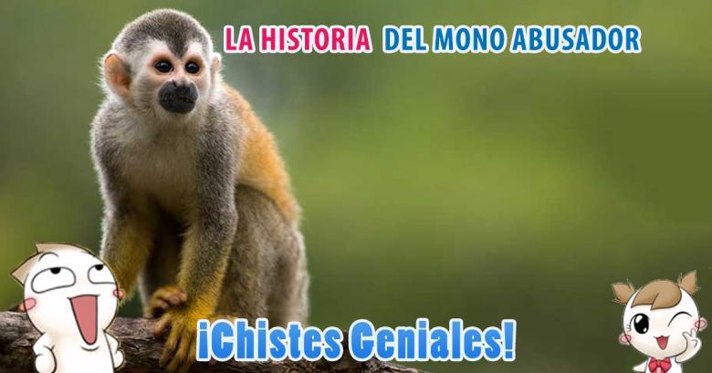 La historia del mono abusador