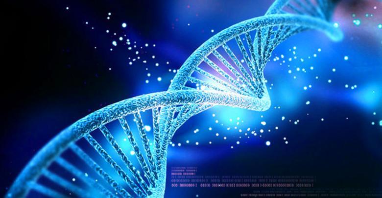 Descubren que el ADN humano sigue evolucionando