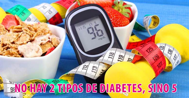 Una nueva investigación revela que no hay 2 tipos de diabetes, sino 5