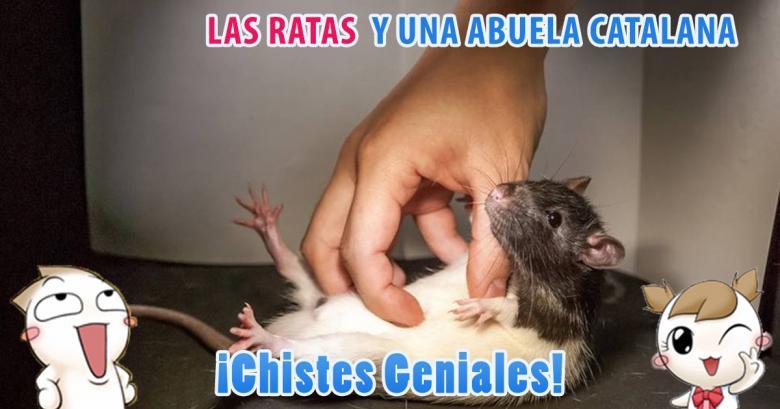 Las Ratas y una abuela, dos chistes geniales