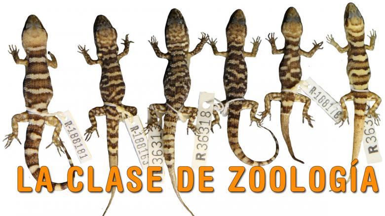 La clase de zoología