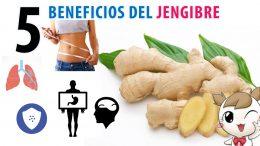5 Beneficios del jengibre