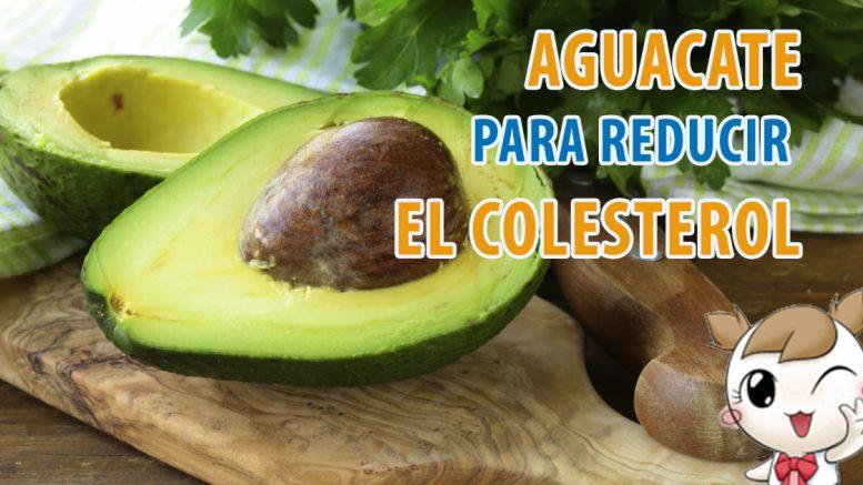 gastronomia-salud-colesterol-alto-el-aguacate-es-la-solucin-gastronomia-salud-colesterol-alto