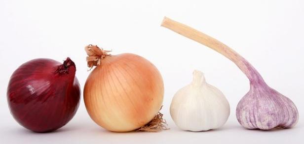 apuntes-y-educacion-gastronomia-salud-alimentos-para-fortalecer-nuestro-sistema-inmunitario-apuntes-y-educacion-gastronomia-salud-ajos