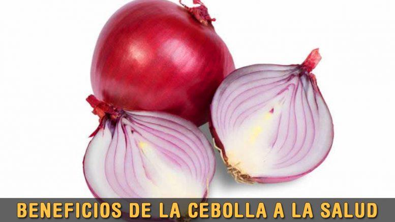 propiedades de la Cebolla