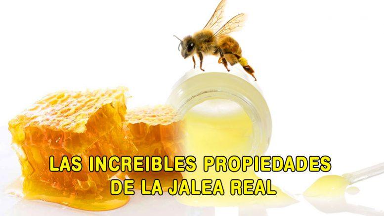 salud-los-increibles-beneficios-de-la-jalea-real-salud-jalea-real