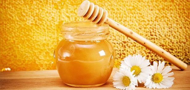 apuntes-y-educacion-gastronomia-salud-alimentos-para-fortalecer-nuestro-sistema-inmunitario-apuntes-y-educacion-gastronomia-salud-miel