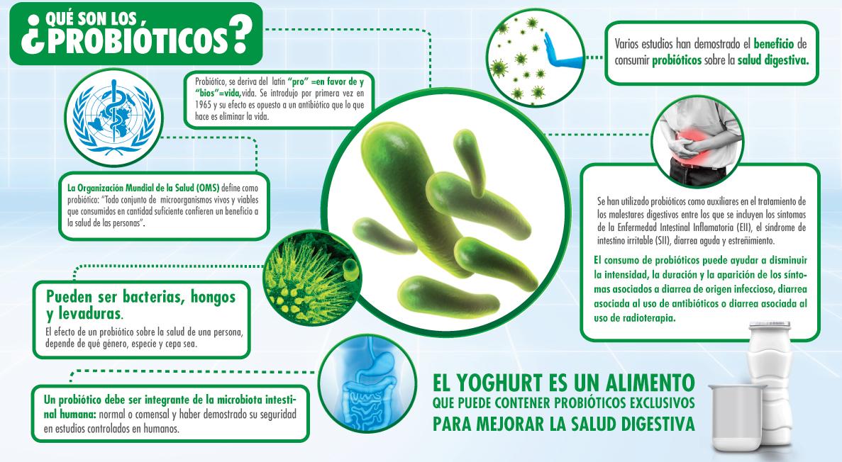 Somos lo que comemos qu son los probi ticos y prebi ticos - Alimentos con probioticos y prebioticos ...