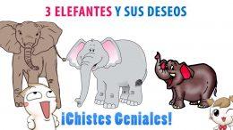 3 Elefantes y sus deseos