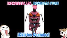 Increíbles las Hormigas Punk